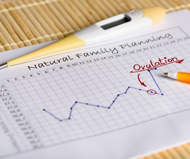 calcul date ovulation